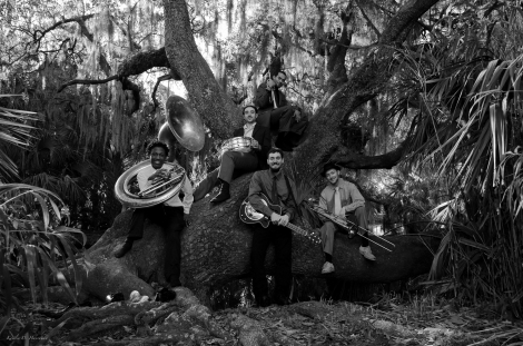Swamp Donkeys Website photo.